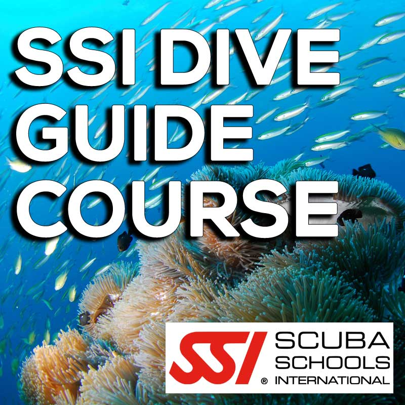 Ssi Course Ssi Dive Guide Gt The Scuba Shop