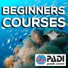 Beginners Courses