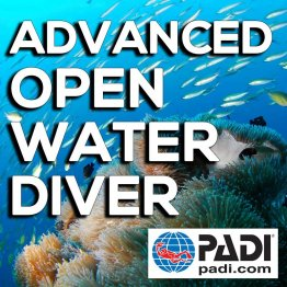 PADI Course- Advanced Open Water