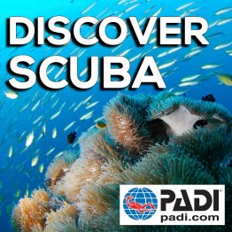 PADI Training Book- Discover Scuba Diving