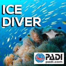 PADI Course- Ice Diving