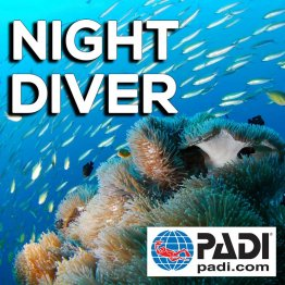 PADI Course- Night Diving
