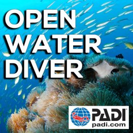 PADI Course- Open Water