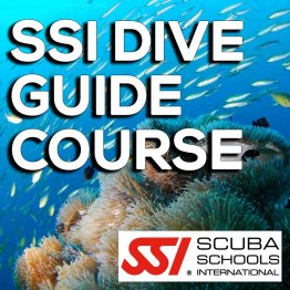 SSI Course- SSI Dive Guide