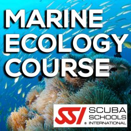 SSI Course- Marine Ecology