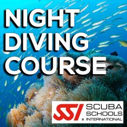 SSI Course- Night Diving