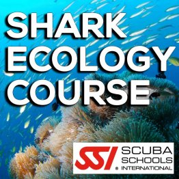 SSI Course- Shark Ecology