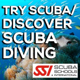 SSI Course- Try Scuba / Discover Scuba Diving