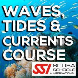 SSI Course- Waves, Tides & Currents