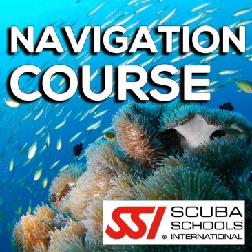 SSI Course- Navigation
